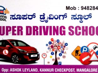 SUPER DRIVING SCHOOL
