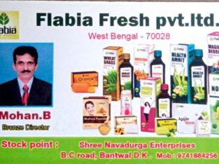 FLABIA FRESH PVT LTD