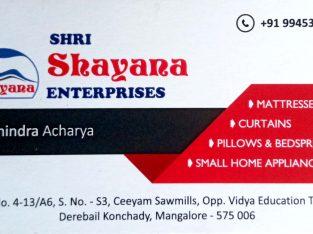 SHRI SHAYANA ENTERPRISES