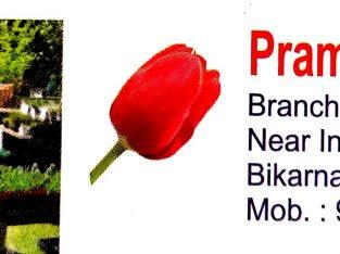 PRAMOD NURSERY