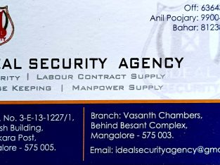 IDEAL SECURITY AGENCY